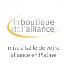 Services - Mise à taille alliance Platine